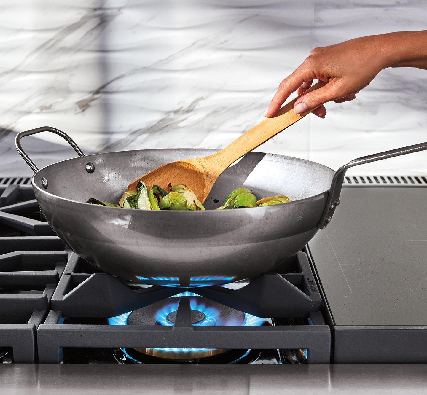 "48"" Dual Fuel Pro Range 
