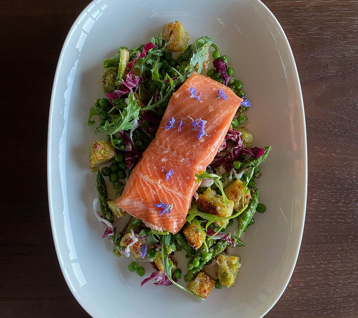 Sous Vide Salmon and Panzanella | Signature Kitchen Suite