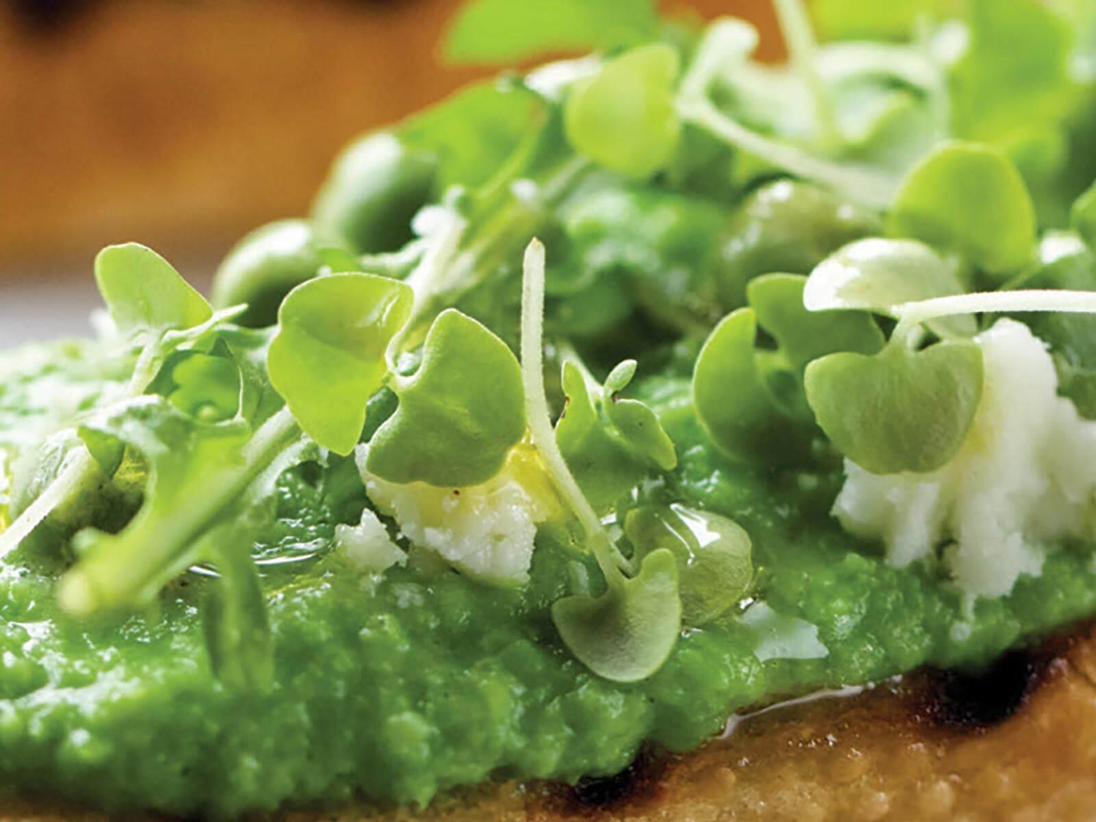 Green Pea Butter Crostini | Signature Kitchen Suite