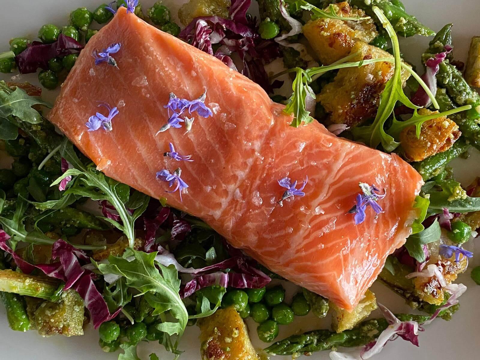 Sous Vide Salmon and Panzanella | Signature Kitchen Suite