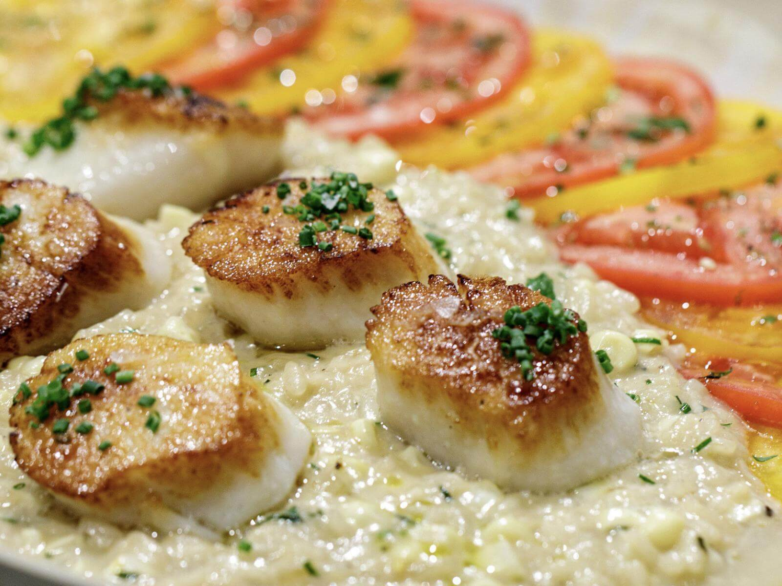 Seared Sous Vide Scallops with Sweet Corn Risotto   Signature Kitchen Suite